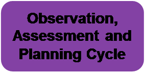 Observation, Assessment and Planning Cycle
